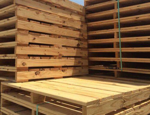 Marktontwikkelingen in de hout- en palletindustrie 2021